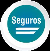 SEGUROS